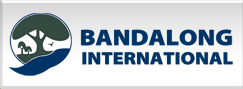 bandalong-international